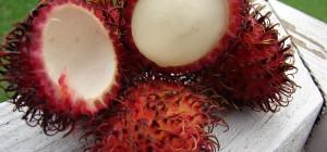weird fruits
