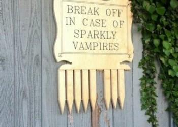 In-case-of-sparkly-vampires