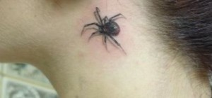 Spider on the neck